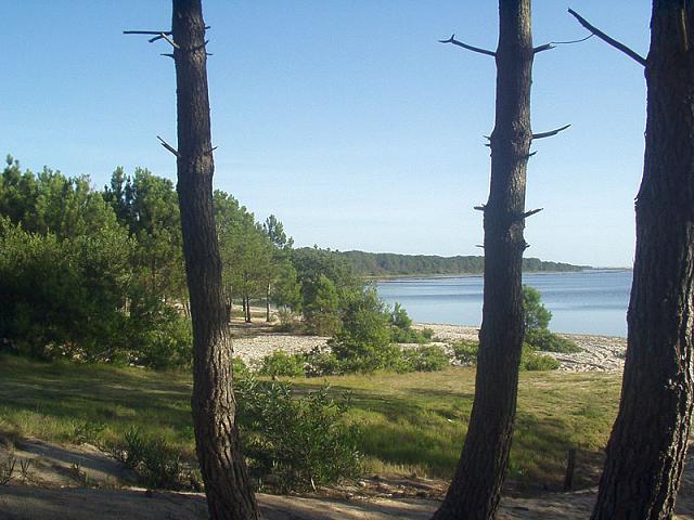 La laguna Garzon, el paisaje de la orilla