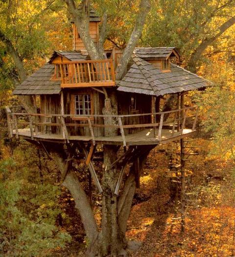 Construir mi casa natural...